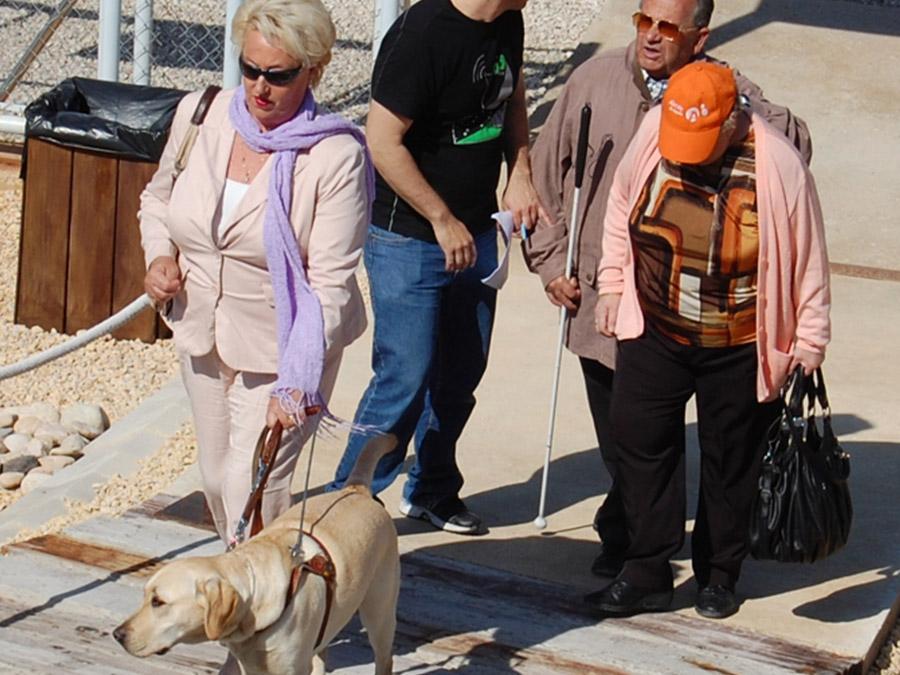 Visita al Yacimiento de La illeta - acceso con un perro guía