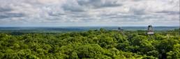 Paisaje de la selva Maya